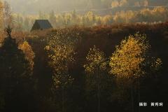 黃秀琍-DSC01608a