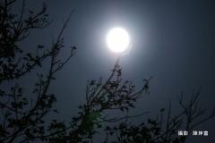 03白月亮掛天上-陳坤富