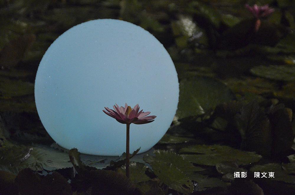 文東-jpg-2
