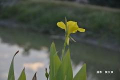 _陳文東1 (9)